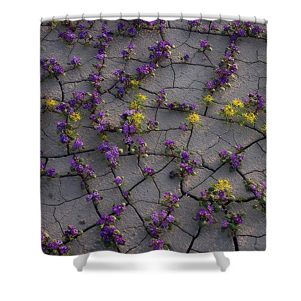 Cracked Blossoms II Shower Curtain