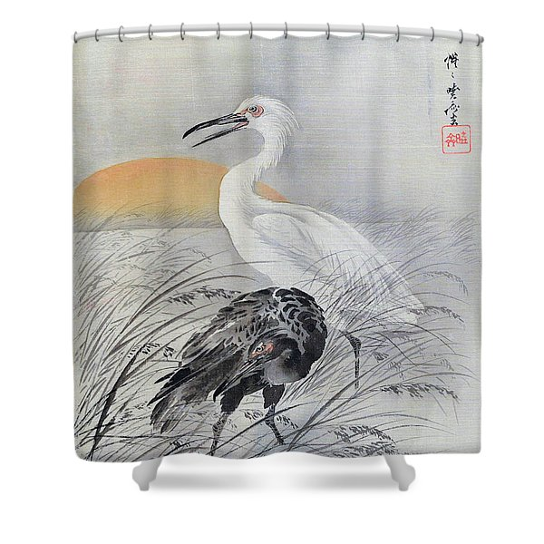 Cranes In Marsh - Digital Remastered Edition Shower Curtain