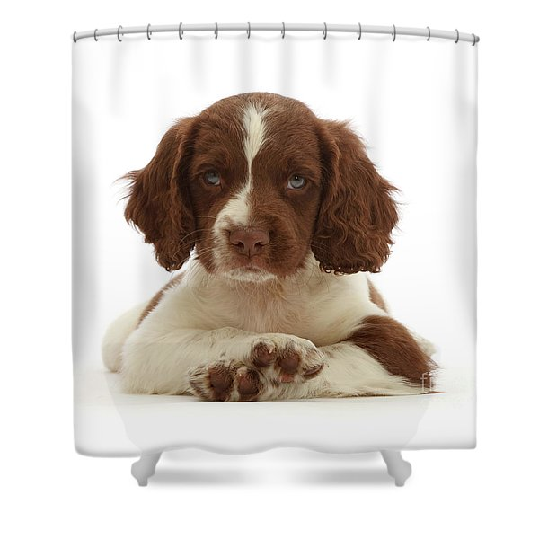 Cross Paws Shower Curtain