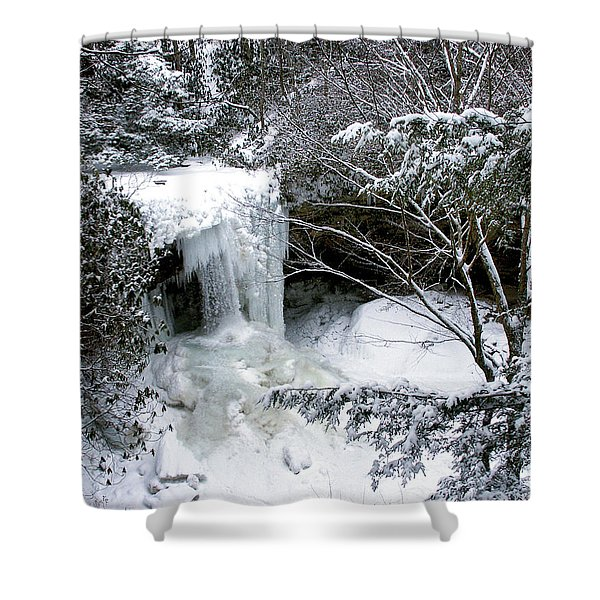 Cucumber In Winter Shower Curtain