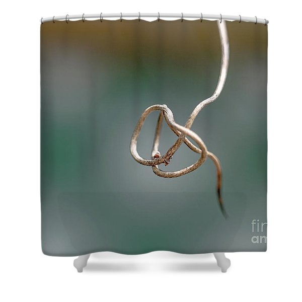 Curly Q Shower Curtain