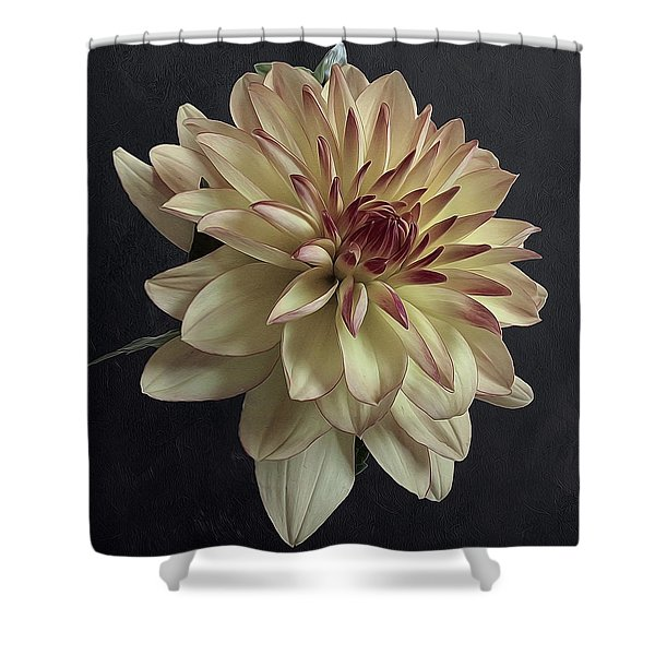 Dahlia Fragrance Shower Curtain