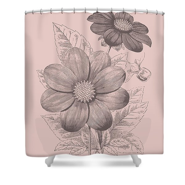 Dahlias Blush Pink Flower Shower Curtain