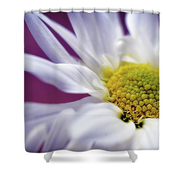 Daisy Mine Shower Curtain
