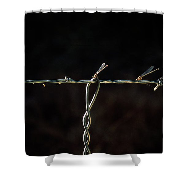 Damsels In Distress  Shower Curtain