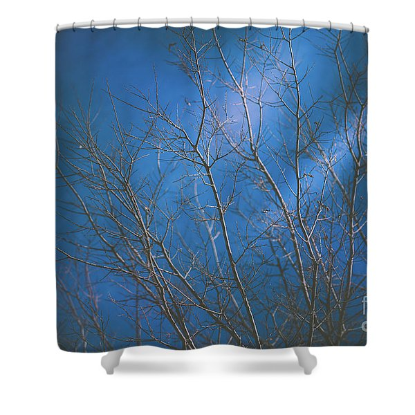 Dark Winter Shower Curtain