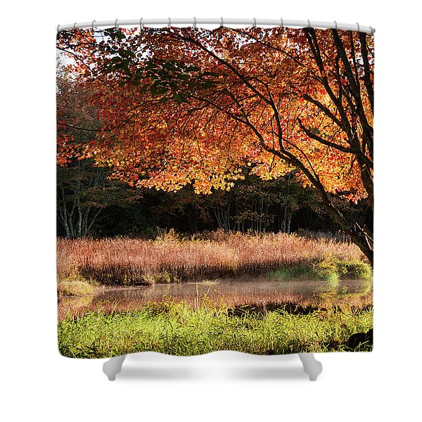 Dawn Lighting Rhode Island Fall Colors Shower Curtain
