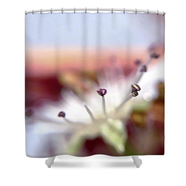 Day 0-1 Sunrise Shower Curtain