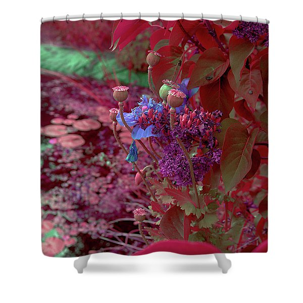Day Of Red Shower Curtain