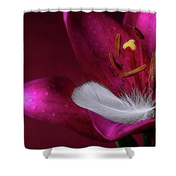 Daylily With Feather Shower Curtain