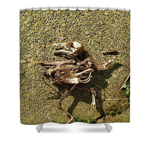 Death Shows Us We Are Nothing But Bones Shower Curtain