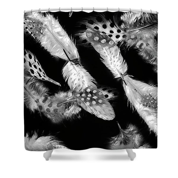 Decorated In Black And White Shower Curtain