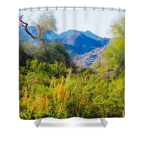 Deep Desert Valley In A Sonoran Desert Spring Shower Curtain