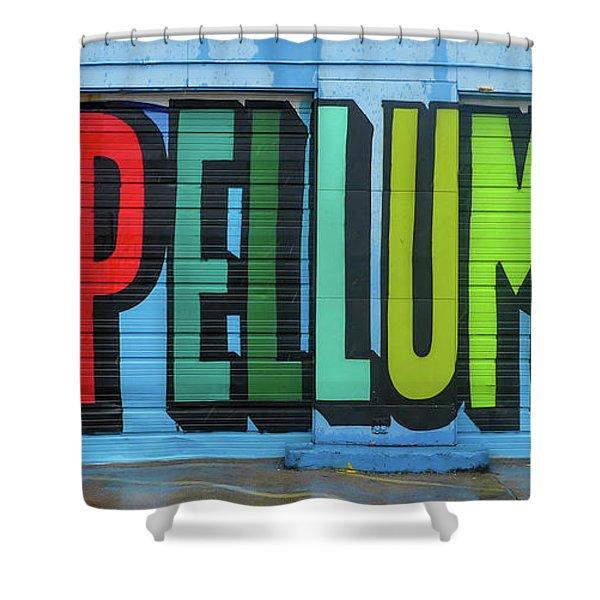 Deep Ellum Wall Art Shower Curtain