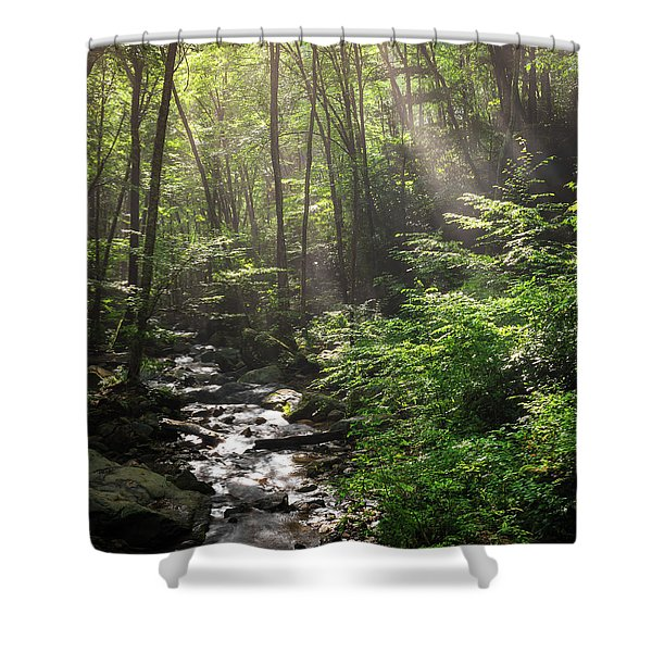 Deep In The Forrest - Sun Rays Shower Curtain