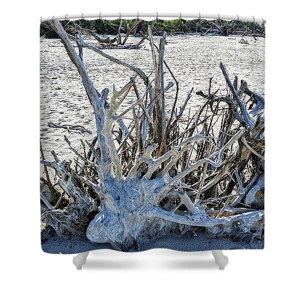 Deep Roots Shower Curtain
