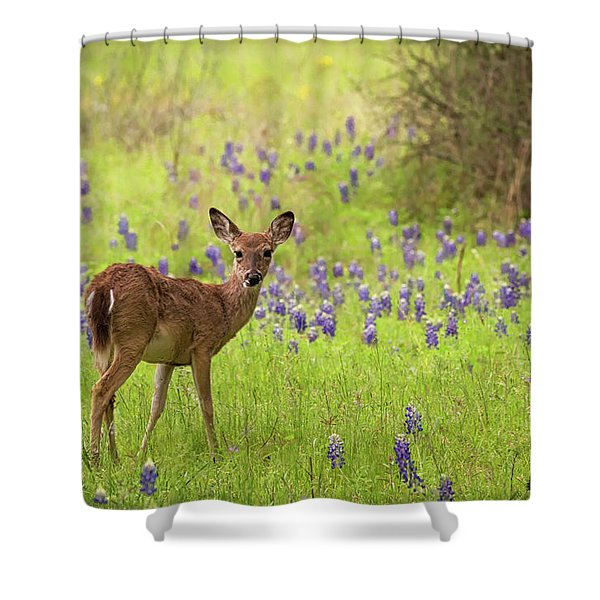 Deer In The Bluebonnets Shower Curtain