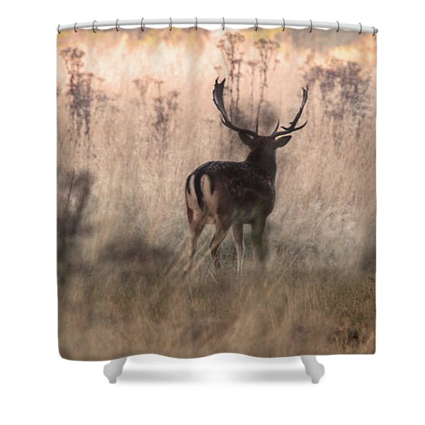 Deer In The Grasses Shower Curtain