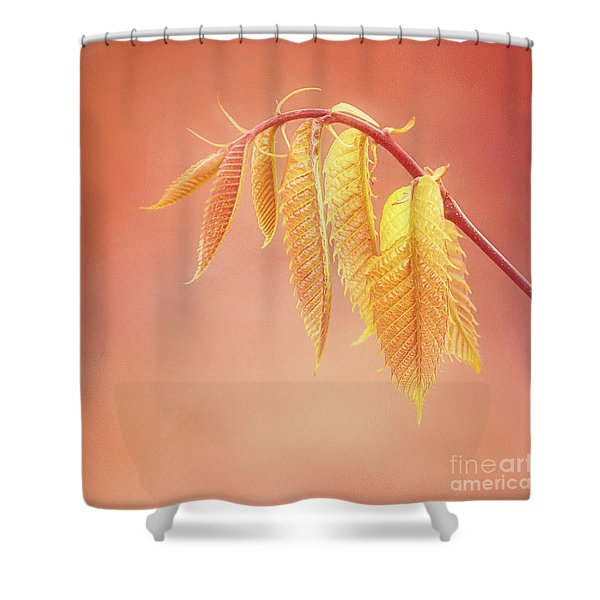 Delightful Baby Chestnut Leaves Shower Curtain