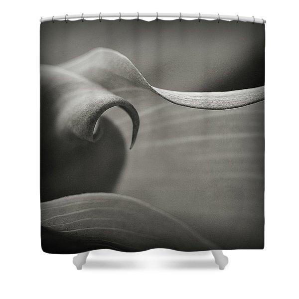 Delve Deeper Shower Curtain