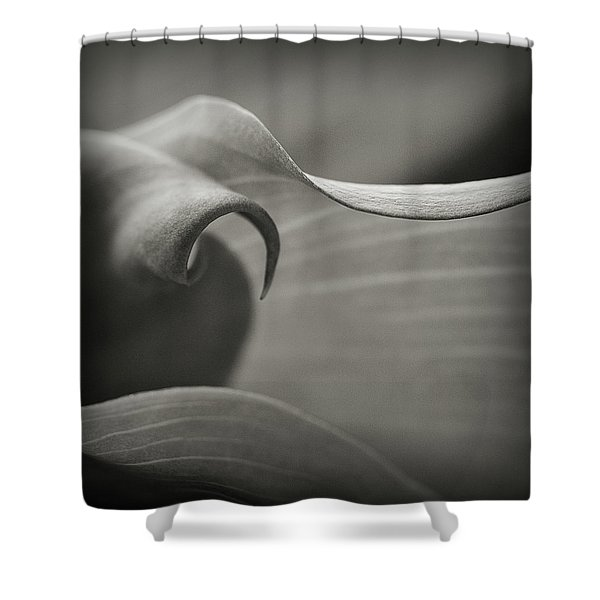 Delve Deeper Shower Curtain