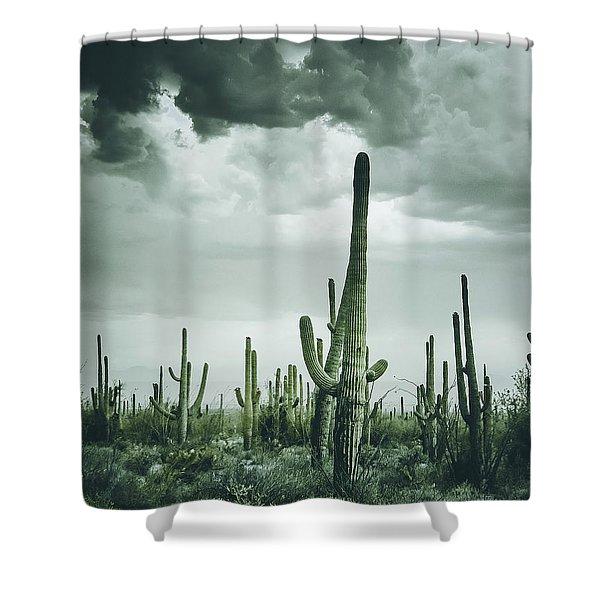 Desert Storm In Arizona Shower Curtain