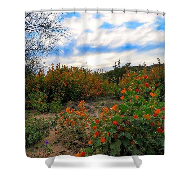 Desert Wildflowers In The Valley Shower Curtain