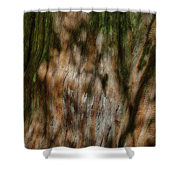 Detail Of Bark On Huge  Tree Shower Curtain