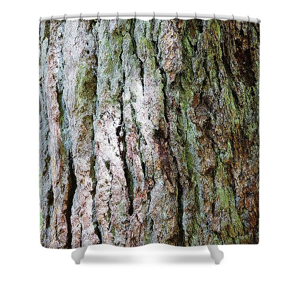 Details, Old Growth Western Redcedars Shower Curtain