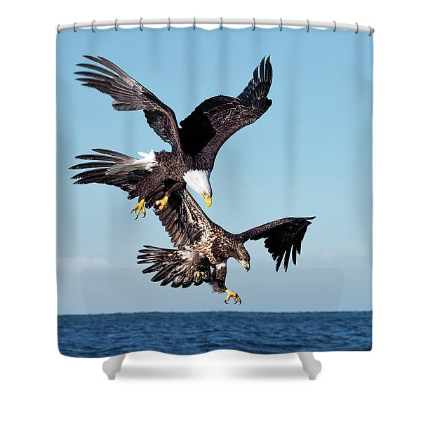 Diving Duo Shower Curtain