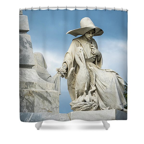 Do Not Forget Me Shower Curtain