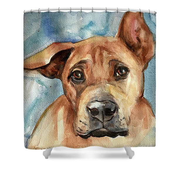 Dog Art Shower Curtain
