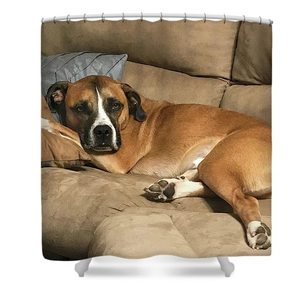 Dog Life Shower Curtain