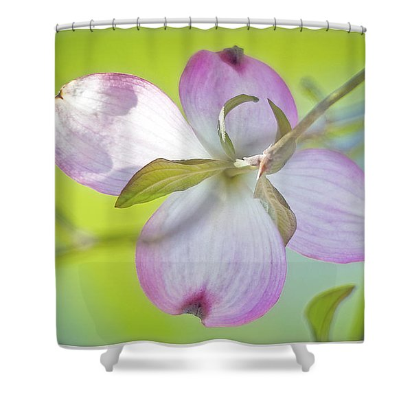 Dogwood Blossom In Spring Shower Curtain
