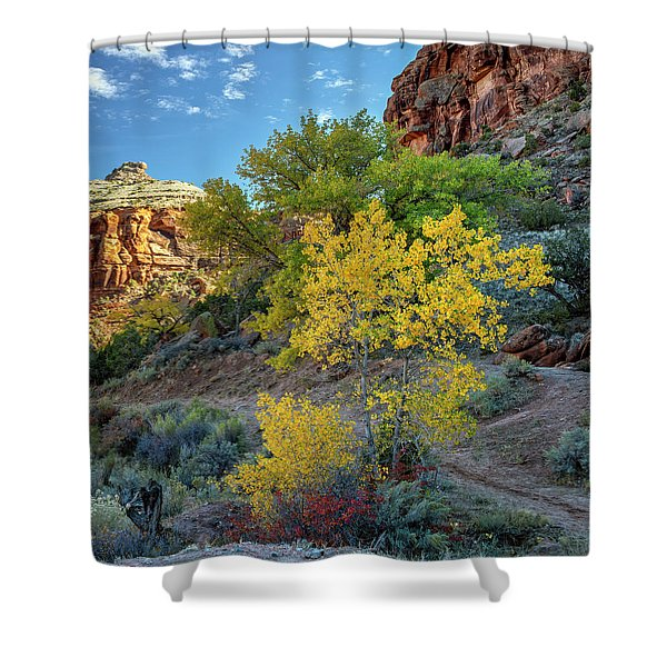 Dominguez Gold Shower Curtain