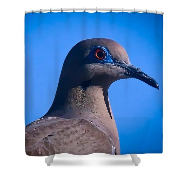 Don't It Make My Brown Eyes Blue Shower Curtain