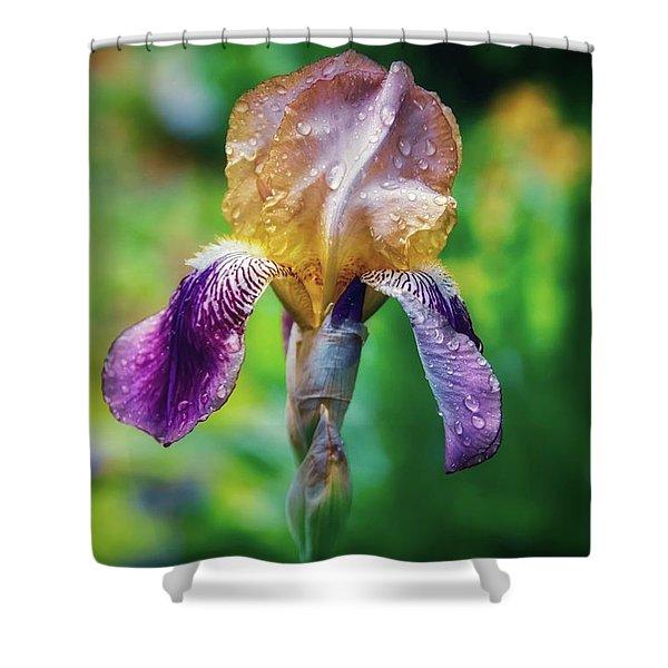 Doris  Shower Curtain