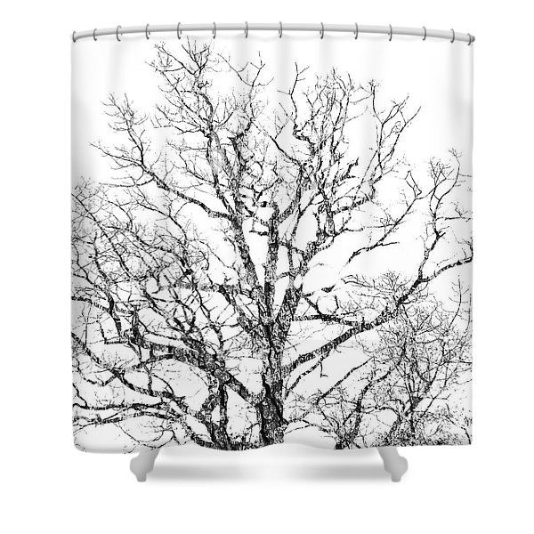 Double Exposure 1 Shower Curtain