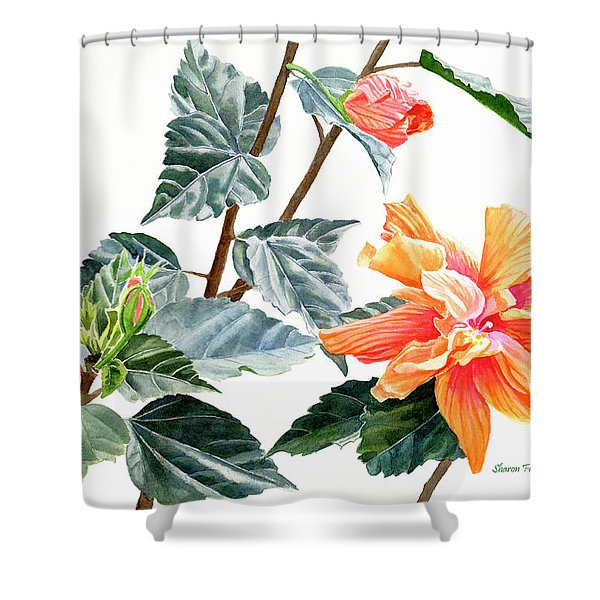 Double Orange Hibiscus With Buds Shower Curtain