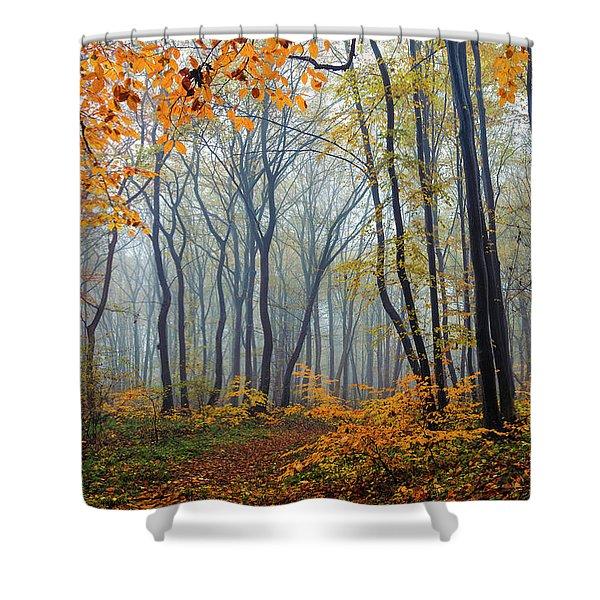 Dream Forest Shower Curtain