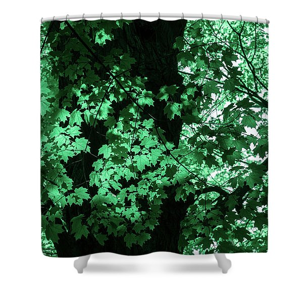 Dreams Of Summer In Paolo Veronese Greens Shower Curtain