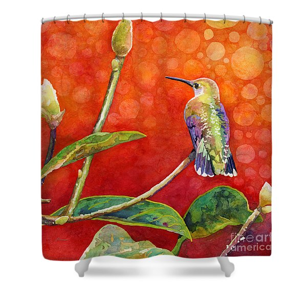 Dreamy Hummer Shower Curtain
