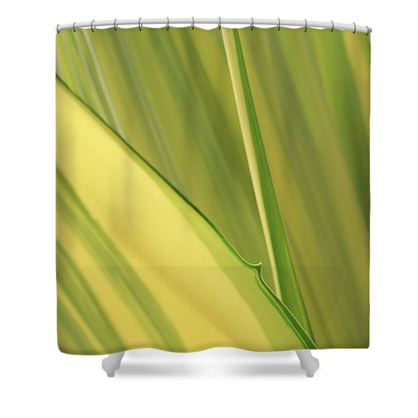 Dreamy Leaves Shower Curtain
