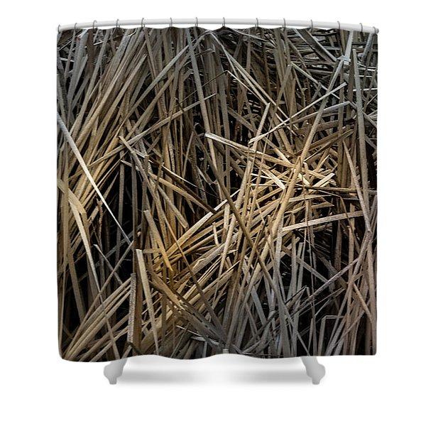 Dried Wild Grass IIi Shower Curtain