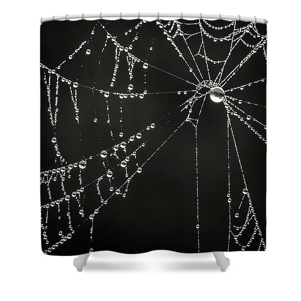 Dripping Shower Curtain