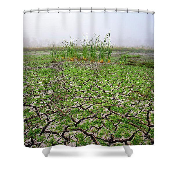 Dry Duck Pond Shower Curtain