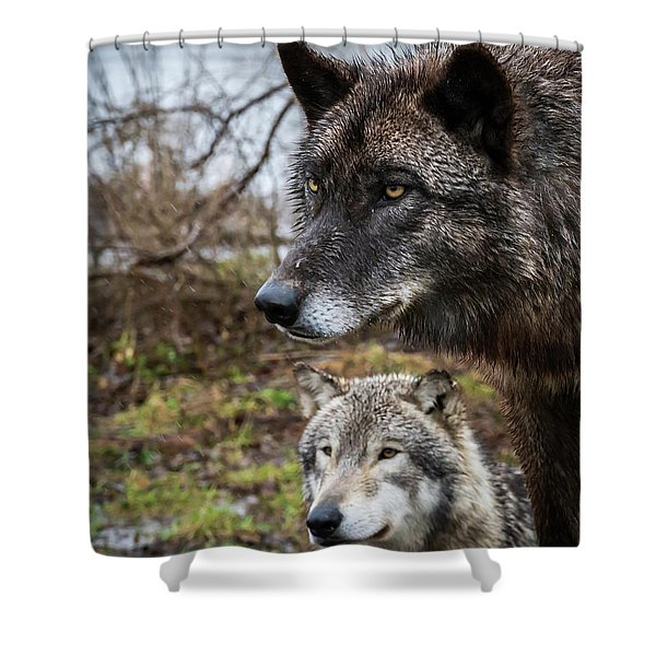 Dual Wolves Shower Curtain