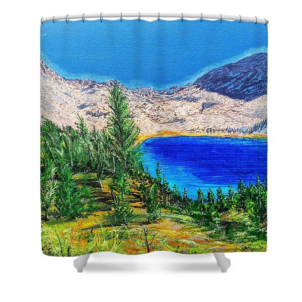 Shower Curtain featuring the painting Duck Pass by Kevin Daly
