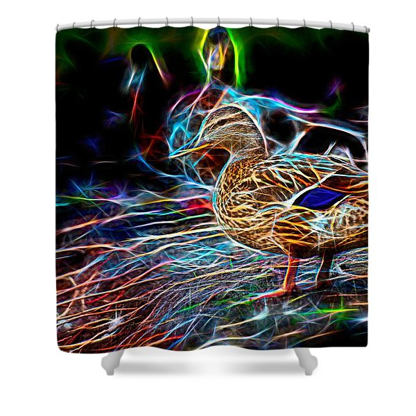 Ducks On Shore Wizard Shower Curtain