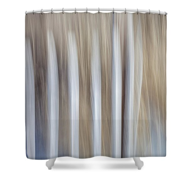 Dune Fence Shower Curtain